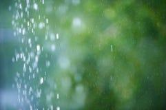 Regen in het bos, de natuurlijke achtergrond en de textuur Vaag abstract beeld Royalty-vrije Stock Foto