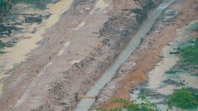 Regen ist in einem tropischen Land Regenguß auf der Straße stock footage