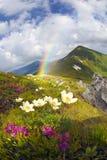 Regen op Chernogora in de Karpaten Royalty-vrije Stock Foto