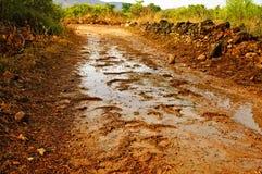Regen op een landweg Stock Foto
