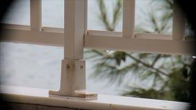 Regen op het balkon die het overzees in een vignet overzien stock videobeelden