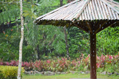 Regen op paraplu Royalty-vrije Stock Afbeelding