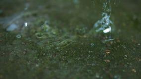 Regen op waterspiegel stock video