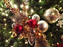 Regen-perlenbesetzte Weihnachtsverzierungen auf Baum im Freien Lizenzfreie Stockbilder