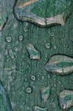Regen-Punkte auf metallischer Tabelle, Spanien. Stockfotos