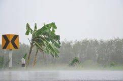 Regen strom mit Straße lizenzfreie stockfotografie