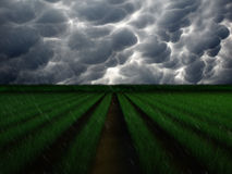 Regen-Sturm über Bauernhof Lizenzfreie Stockbilder