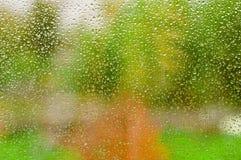 Regen-Tropfen auf einem Fenster-Glas, undeutliche Garten-Ansicht Lizenzfreie Stockfotos