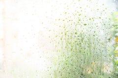 Regen-Tropfen auf Glashintergrund Stockfotografie