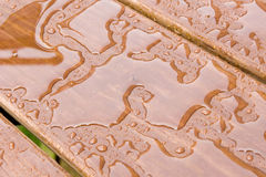 Regen-Tropfen auf Holz Stockfoto