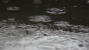 Regen-Tropfen - Zeitlupe stock footage