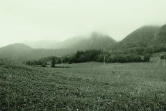 Regen und Nebel Stockfoto
