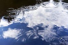 Regen, vijver en zomer Stock Foto