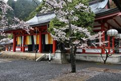 Regenachtig Japan stock foto's