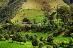 Regenachtig landschap in Buenavista, Quindio royalty-vrije stock foto's