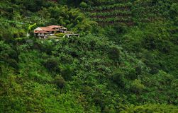 Regenachtig landschap in Buenavista, Quindio stock afbeeldingen