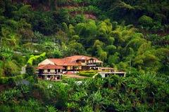 Regenachtig landschap in Buenavista, Quindio royalty-vrije stock fotografie
