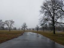 Regenachtig park Royalty-vrije Stock Foto's