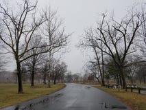 Regenachtig park Royalty-vrije Stock Afbeeldingen