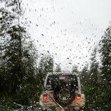 Regenachtige aandrijving in het hout Royalty-vrije Stock Foto