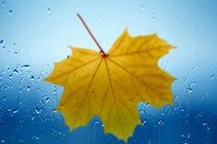 Regenachtige dag Royalty-vrije Stock Foto