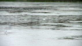 Regenachtige dag dichtbij rivierbank in de zomer stock footage