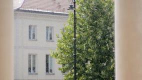 Regenachtige dagscène: regen in de straat met oude huis, lantaarn en boom in de zomer stock video