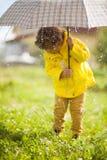 Regenachtige de herfstdag Stock Fotografie