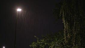 Regenachtige nacht Solitaire Lantaarnpaal en een Natte Boom stock footage