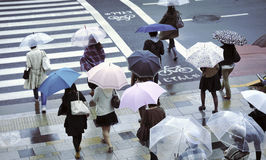Regenachtige straat Stock Afbeelding
