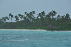 Regenachtige tropische kustlijn Royalty-vrije Stock Foto's