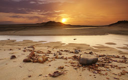 Regenachtige zonsopgang Royalty-vrije Stock Afbeelding