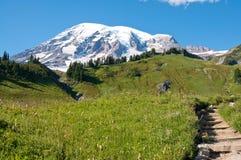 Regenachtigere berg, Paradijsvallei Royalty-vrije Stock Foto's
