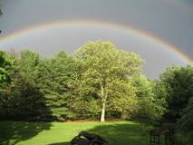 Regenbogen über Baum stockfoto
