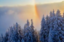 Regenbogen über dem schneebedeckten Wald Stockbilder