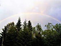 Regenbogen über dem Wald Stockbild