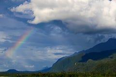 Regenbogen über dem Wald Stockfotografie
