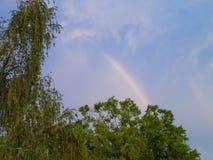 Regenbogen über den Bäumen 4 Stockbild