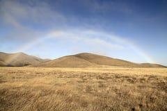 Regenbogen über der Wiese von Neuseeland Stockbilder