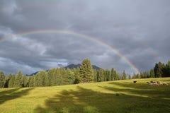 Regenbogen über Gebirgs- und Schafweide Karwendel Lizenzfreie Stockfotografie