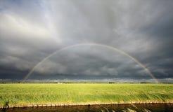 Regenbogen über grüner Wiese und Fluss Stockfotografie