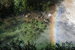 Regenbogen über Moos bedecktem Fluss stockbild