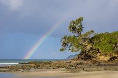 Regenbogen über Waipu-Bucht mit Pohutakawa Stockbilder
