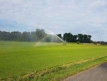 Regenbogen Foto de Stock Royalty Free