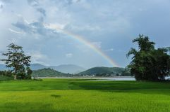 Regenbogen auf dem Gebiet in Dak Lak stockfotos