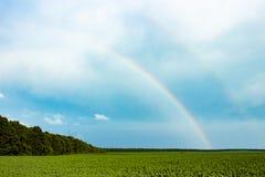 Regenbogen auf dem Horizont Lizenzfreie Stockbilder