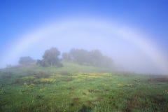 Regenbogen auf einem Gebiet Lizenzfreies Stockfoto