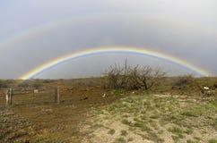 Regenbogen auf Kohala Küste, Hawaii Stockbilder
