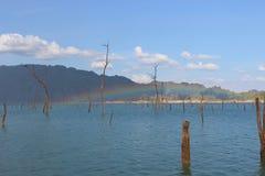 Regenbogen auf See und totem Baum Lizenzfreie Stockfotos