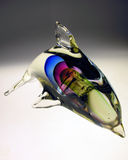 Regenbogen-Delphin lizenzfreie stockfotos